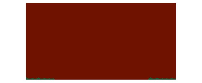 Windham Orchestra logo